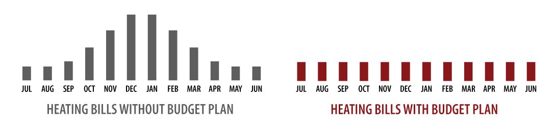 Ferro budget plan